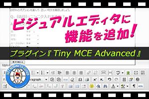 ワードプレスのエディタ機能追加プラグインTinyMCEAdvancedの設定方法